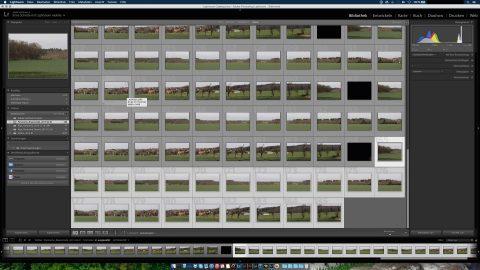 Bild: Dann die Einzelbilder markieren, die zum Panoramafoto zusammengerechnet werden sollen.