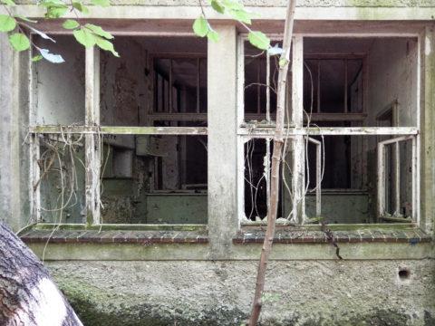 Bild: Detailansicht einer Baracke aus der Zeit des 18. Marinepionierbataillon der NVA auf dem ehemals militärisch genutzten Areal des Schlosses Dwasieden in der Nähe des Hafens von Sassnitz. Klicken Sie auf das Bild um es zu vergrößern.