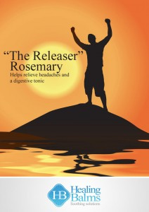 The Releaser - pic for website