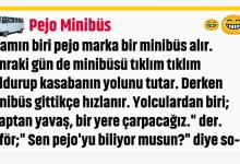 Photo of Pejo Minibüs