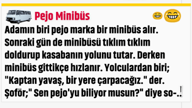 Photo of Pejo Minibüs