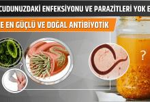 Photo of Vücudunuzdaki Enfeksiyonu ve Parazitleri Yok Edin! İşte En Güçlü ve Doğal Antibiyotik.