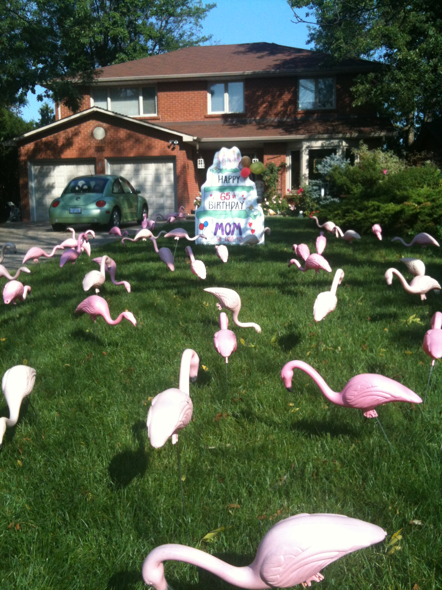 Dinosaur Lawn Decorations Lawn Greetings