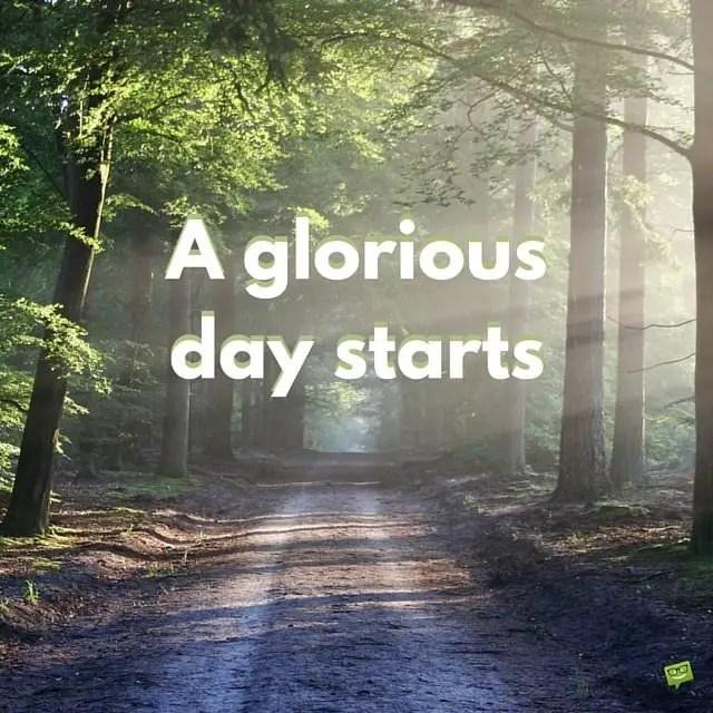 15 Optimistic Good Morning Cards