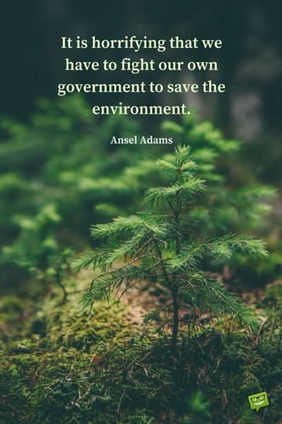 50 Insightful Famous Quotes about the Environment
