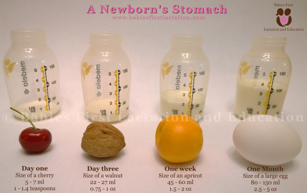 newborn-stomach-small[1]