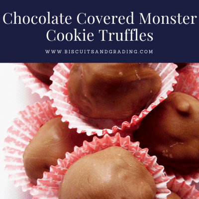 Chocolate Covered Monster Cookie Truffles