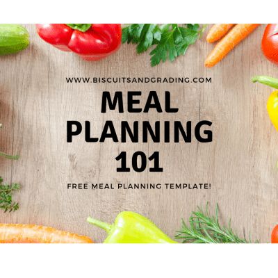 Meal Planning 101 - FREE Meal Planning Template!