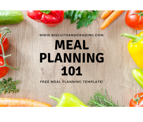 Meal Planning 101 – FREE Meal Planning Template!