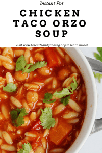 Instant Pot Chicken Taco Orzo Soup #instantpot #pressurecooker #recipes #familyfriendly #foodblog