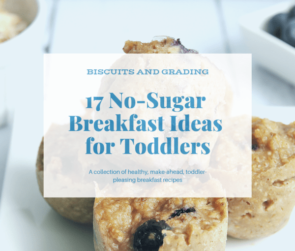 17 No Sugar Breakfast Ideas for Toddlers