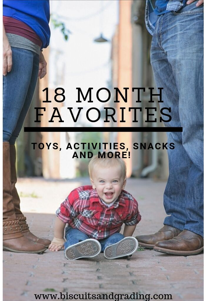 18 Month favorites pinterest image