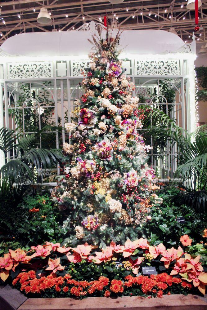 christmas tree garden glow missouri 1