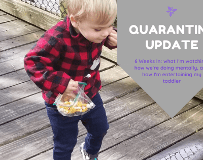 Coronavirus Quarantine Update - 6 Weeks In