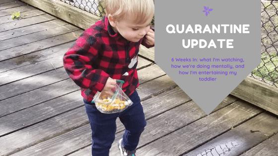 Coronavirus Quarantine Update – 6 Weeks In
