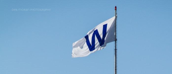 Cubs Win! Cubs Win!!! CUBS WIN!!!!!!!!