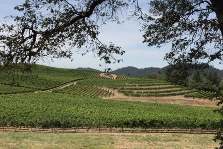 Grapevines and Switchbacks and Mountains, Oh My! – Wineventure Day 2 of 4
