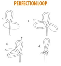 Perfection Loop Illustration