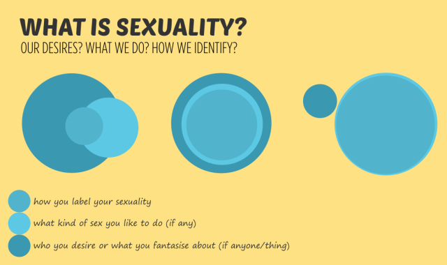 What is sexuality? how you label your sexuality. what kind of sex you like to do (if any) who you desire or what you fantasise about (if anyone/thing)