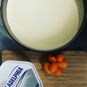 Cheesecake Kumquats - Bisotro Zakka