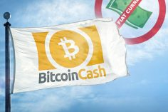 Raising the Dead: Is Bitcoin Cash Fiat Currency? 10