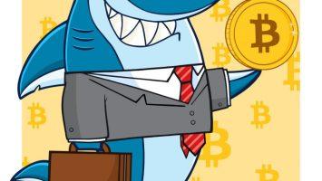 Bitcoin shark
