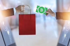 Frictionless Commerce: A Story of How Easy It Is to Start Accepting Bitcoin Cash 2