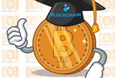 Blockchain.com Launches New Educational Resource With Bitcoin Cash Report 1