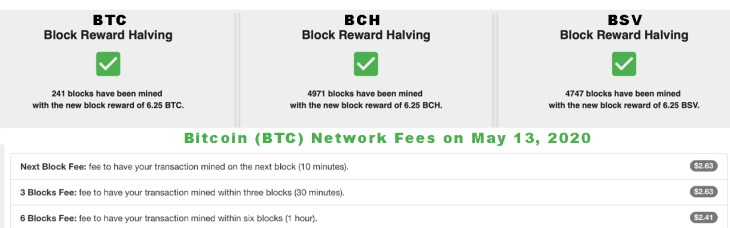 2 Days After the Bitcoin Halving: Network 'Remains Strong,' Higher Fees, Bullish Sentiment