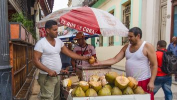 Food and Cash Shortages Push Cubans Toward Permissionless Cryptocurrencies 2