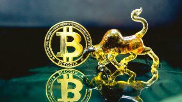microstrategy ceo personal bitcoin 768x432 1