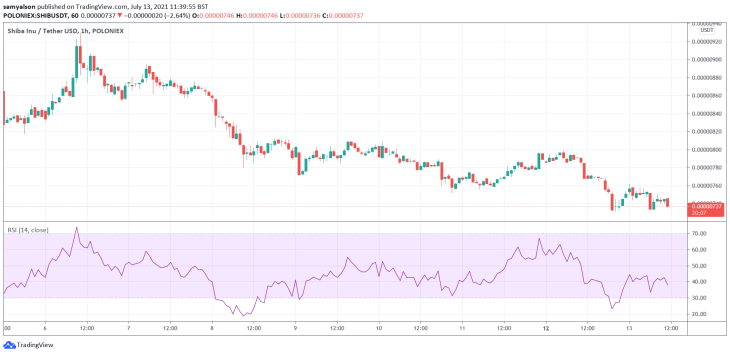 Shiba Inu hourly crypto chart
