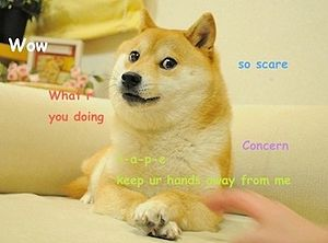 300px Original Doge meme