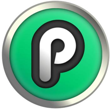 Playchip logo