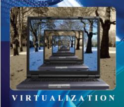 Hardware BIOS settings for VMware vSphere®