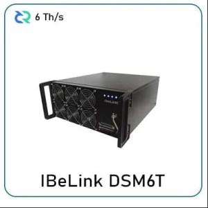 iBeLink™ DSM6T