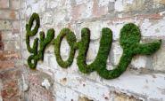 natural-green-moss-graffiti