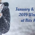 Workshops for January & February 2019