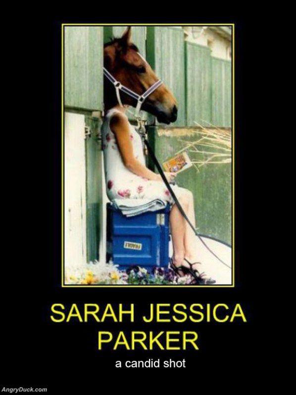 Sarah_Jessica_Parker