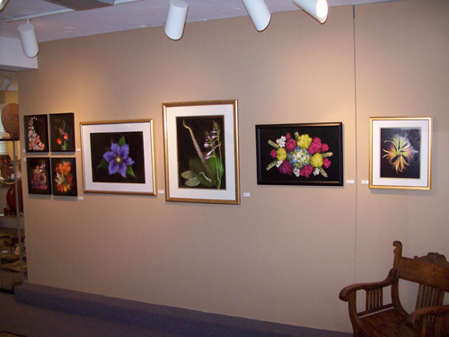 The Woodshed Gallery Exhibit, October 2011
