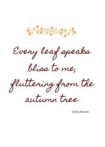 every leaf