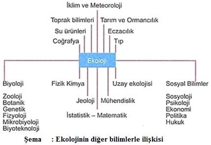 ekolojinin diğer bilimlerle ilişkisi