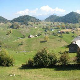 Peste 150.000 de turiști au preferat agroturismul în județul Brașov