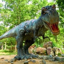 Primii dinozauri vor ajunge la Râşnov, luna viitoare
