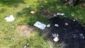 Gunoaie picnic Cheile Rasnoavei (3)