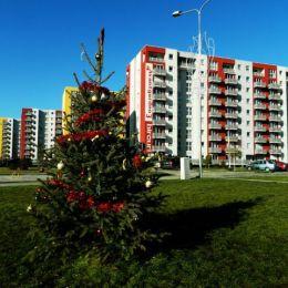 Programul Prima Casă va favoriza achiziția de locuințe noi