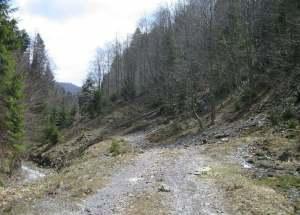 Drum Valea Doftanei-pasul-predelus