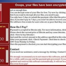"""Virusul """"Wanna"""" a încercat să dea atacul și în sistemul informatic al Primăriei Brașov. 300 de computere au fost în pericol"""