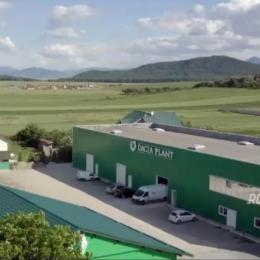 Dacia Plant investește anul acesta într-un depozit de 1.300 mp