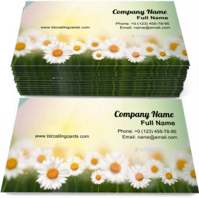 Summer with camomiles Business Card Template